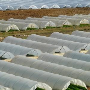 Videotechnik Landwirtschaft